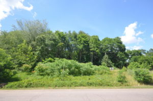 image of wooded lot for sale at 5020 Misty Creek Drive, Kalamazoo, MI 49009